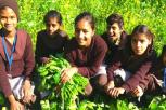 Students Turn School Into Agricultural Village