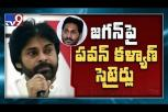 Pawan Kalyan comments on YS Jagan party