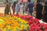 Flower Show At Kanakakkunnu Palace Ends