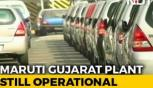 Maruti announces 'No-Production Days' in Haryana Plants amid Auto crisis