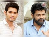 Sukumar's film with Mahesh Babu is still on