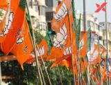 BJP Clean sweeps Haryana, wins all 10 seats with 73.57 lakh votes !