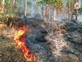 Wildfires devouring Anchunadu valley