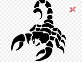 Horoscope Daily - 25 January 2019 - Scorpio
