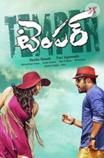 Temper Box Office Collection