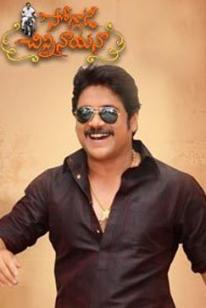 Soggade Chinni Nayana Box Office Collection