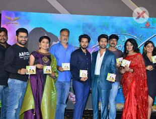 Crazy Crazy Feeling Audio Launch Photos - Gallery