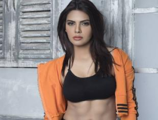 Bollywood actress and model sherlyn chopra is all set to rule the internet