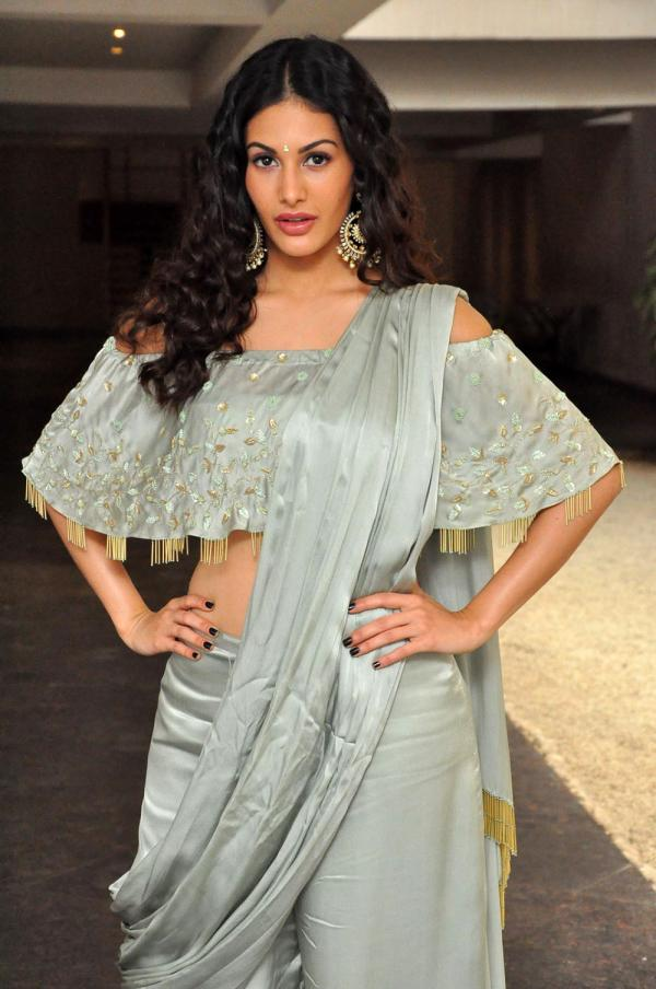 Amyra Dastur Stills From Manasuku Nachindi Movie Pre Release Event