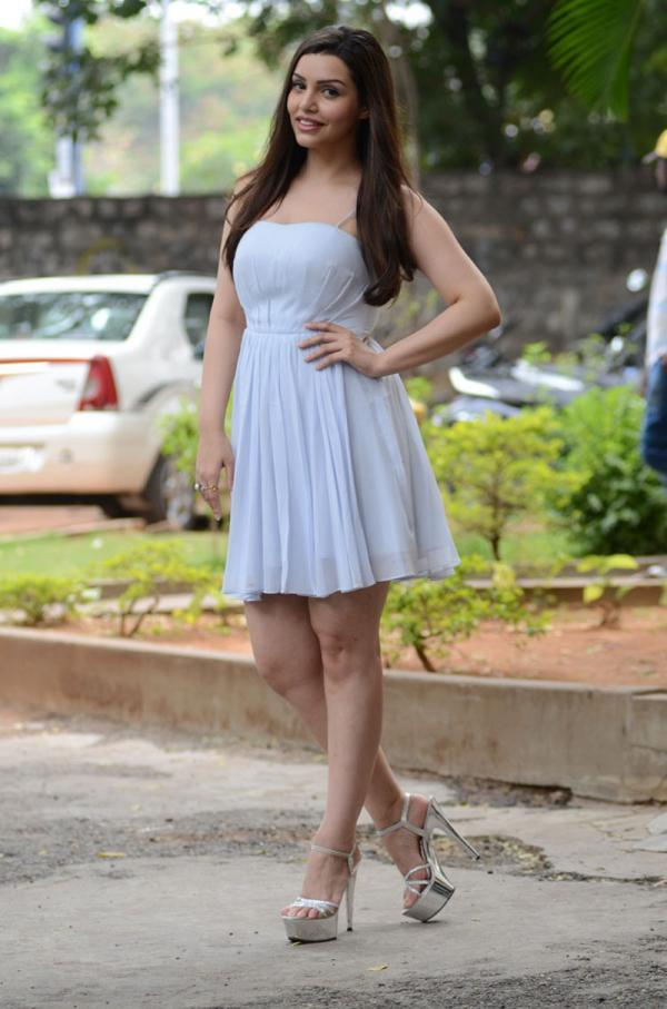 Kyra Dutt  at EGO Movie Pressmeet