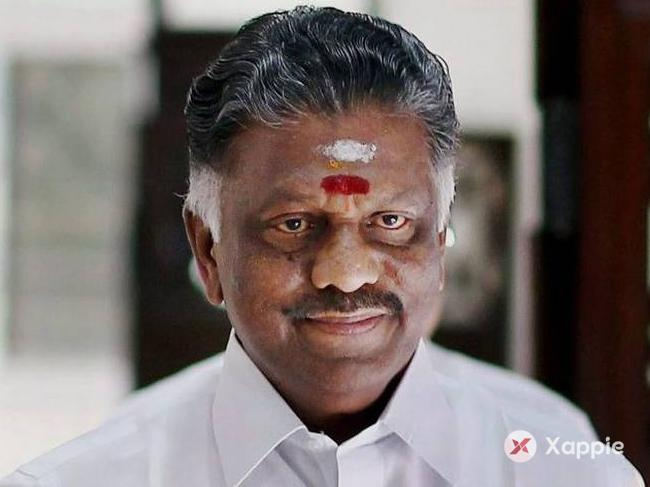AIADMK will go it alone if others do it: Panneerselvam