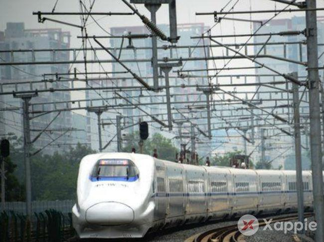 Green Signal for Bullet train via national park