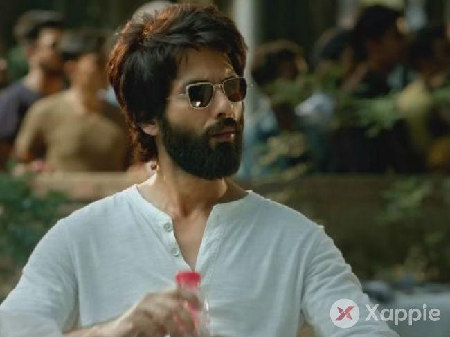 Kabir Singh Box Office Collection Day 17