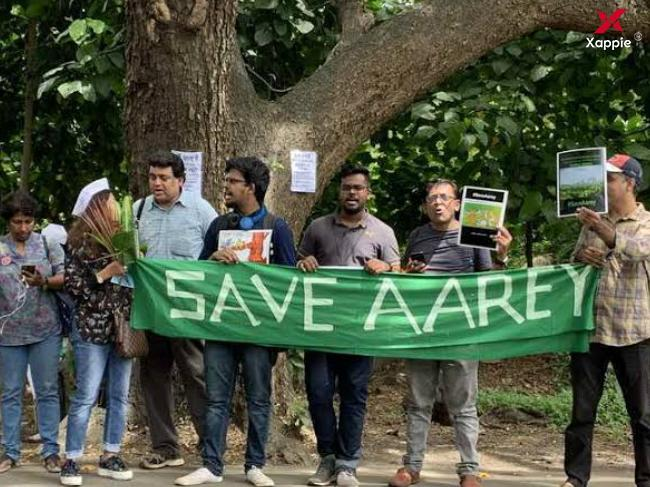 No more tress to be cut in Aarey till next hearing: Supreme Court