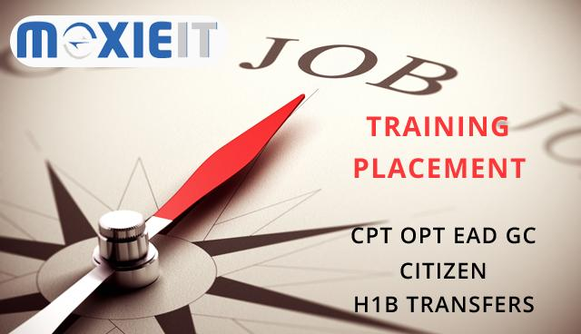 IT Training & Placement