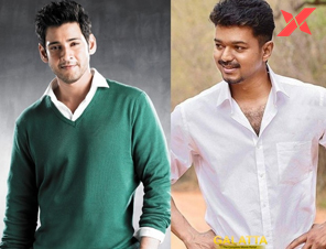 Mahesh Babu shows interest to do a multistarrer with Vijay
