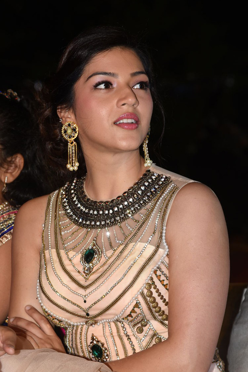 Mehreen Kaur at Jawaan Movie Pre Release Fuction