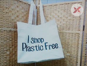 Ban of Plastic Bags deadline closes in a month