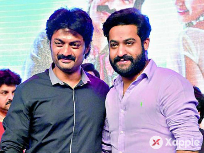 Jr NTR and Kalyan Ram to stay away from future TDP campaigns too