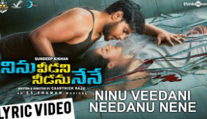 Ninu Veedani Needanu Nene Telugu Movie