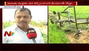 Cyclone Phethai : Unexpected Rains Destroys Crops in Telangana